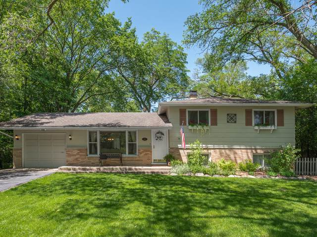 228 41st Street, Downers Grove, IL 60515 (MLS #10492993) :: Property Consultants Realty