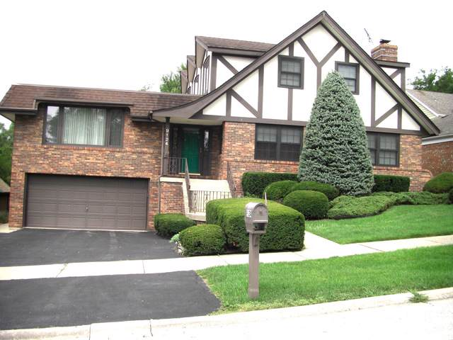 9124 Stratford Lane, Palos Hills, IL 60465 (MLS #10493097) :: Century 21 Affiliated