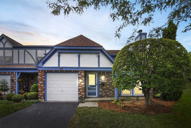 9341 Montgomery Drive, Orland Park, IL 60462 (MLS #10493215) :: Angela Walker Homes Real Estate Group