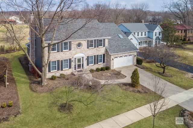 1095 Pomona Court, Naperville, IL 60540 (MLS #10493217) :: Angela Walker Homes Real Estate Group
