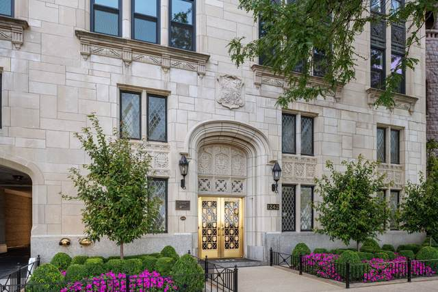 1242 N Lake Shore Drive 6N, Chicago, IL 60610 (MLS #10493279) :: Baz Realty Network | Keller Williams Elite