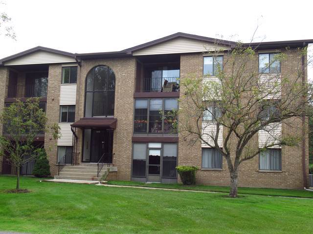 11111 S Kean Avenue #203, Palos Hills, IL 60465 (MLS #10493347) :: The Wexler Group at Keller Williams Preferred Realty
