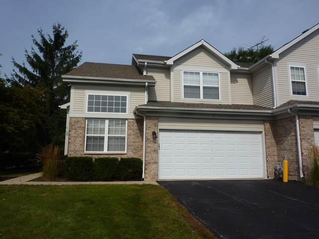 164 Avalon Court, Roselle, IL 60172 (MLS #10493374) :: Berkshire Hathaway HomeServices Snyder Real Estate