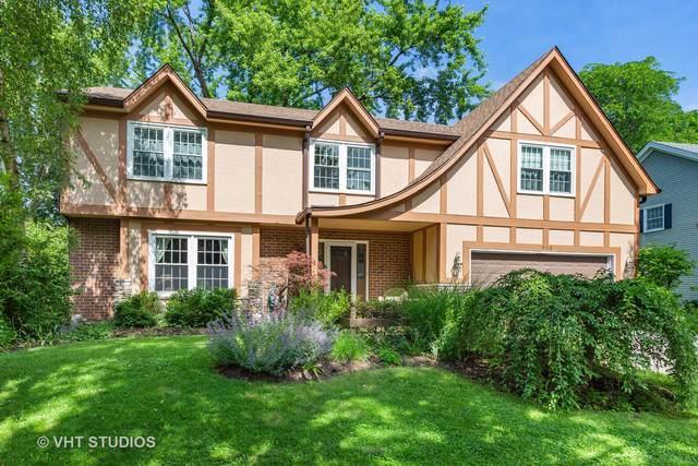 913 Canonero Drive, Naperville, IL 60540 (MLS #10493474) :: Property Consultants Realty