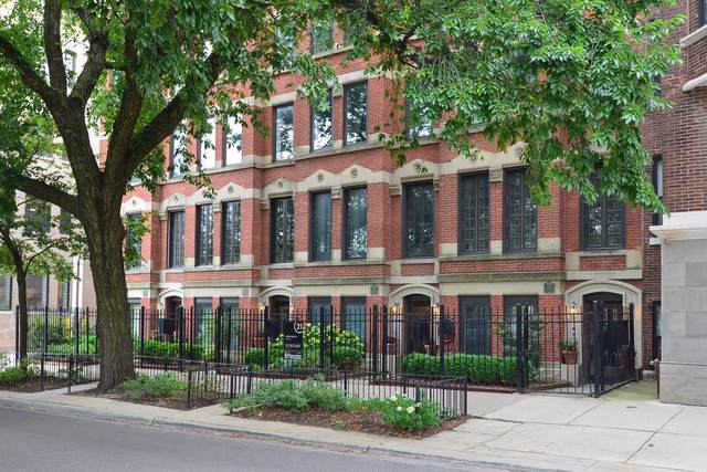 319 W Webster Avenue #1, Chicago, IL 60614 (MLS #10493600) :: Touchstone Group