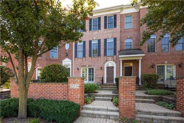 325 Big Rail Drive, Naperville, IL 60540 (MLS #10493623) :: Angela Walker Homes Real Estate Group