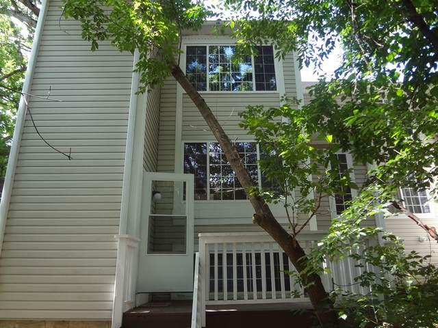 311 W Treehouse Lane, Round Lake, IL 60073 (MLS #10493660) :: Baz Realty Network | Keller Williams Elite