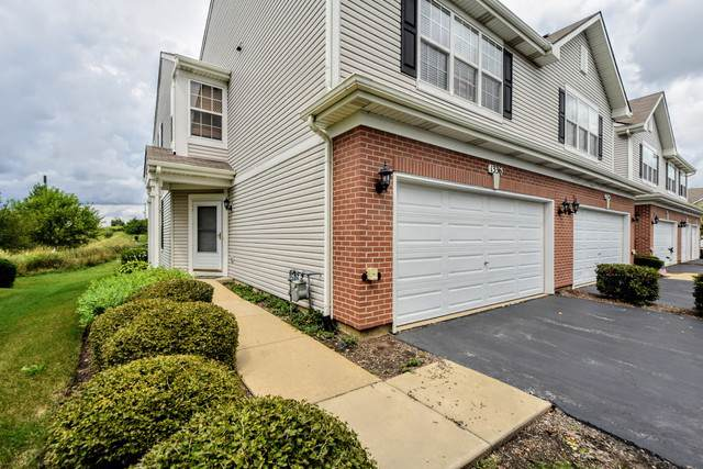 1336 W Crane View Court #1336, Round Lake, IL 60073 (MLS #10493690) :: Property Consultants Realty