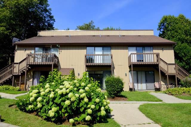38 Bermuda Colony #7, Fox Lake, IL 60020 (MLS #10493695) :: John Lyons Real Estate