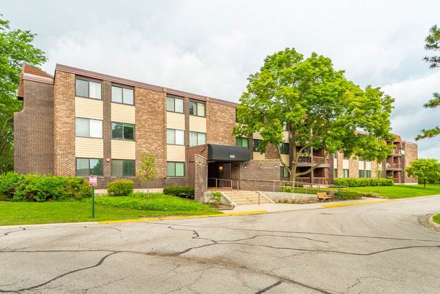 450 Raintree Court 3G, Glen Ellyn, IL 60137 (MLS #10493711) :: The Wexler Group at Keller Williams Preferred Realty