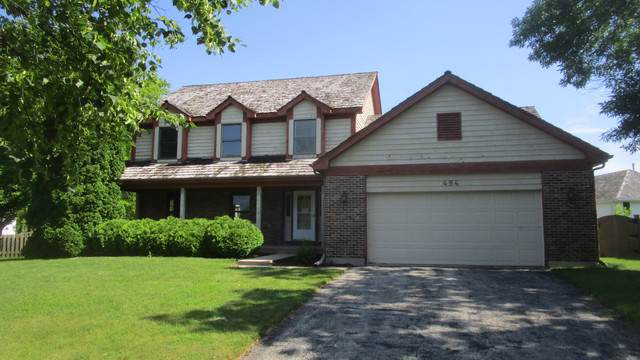484 Iron Horse Court, Grayslake, IL 60030 (MLS #10493721) :: Property Consultants Realty