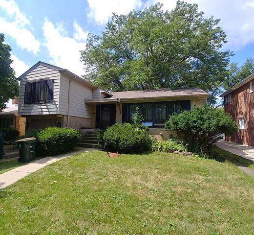 1900 Brophy Avenue, Park Ridge, IL 60068 (MLS #10493722) :: Berkshire Hathaway HomeServices Snyder Real Estate