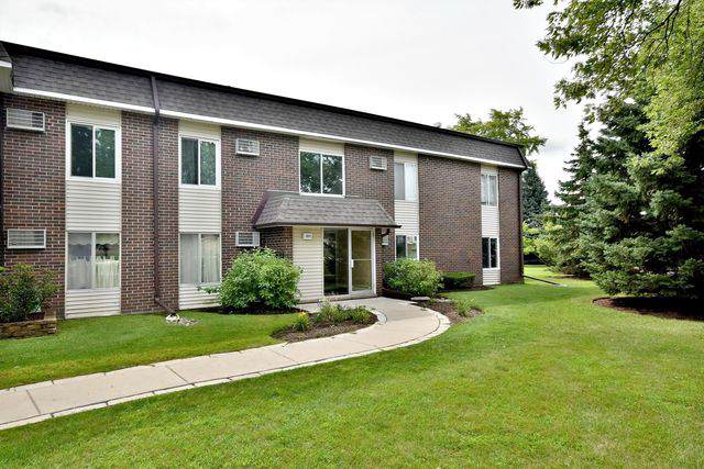1117 Miller Lane #107, Buffalo Grove, IL 60089 (MLS #10493842) :: The Wexler Group at Keller Williams Preferred Realty