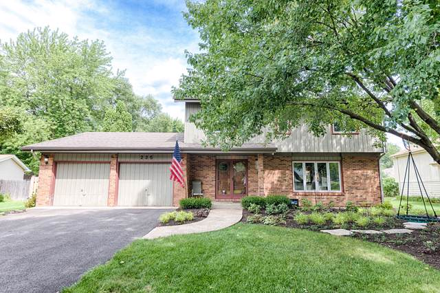 235 Terrance Drive, Naperville, IL 60565 (MLS #10493847) :: The Wexler Group at Keller Williams Preferred Realty