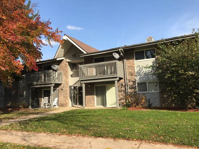 16W755 Mockingbird Lane #202, Willowbrook, IL 60527 (MLS #10493927) :: Angela Walker Homes Real Estate Group
