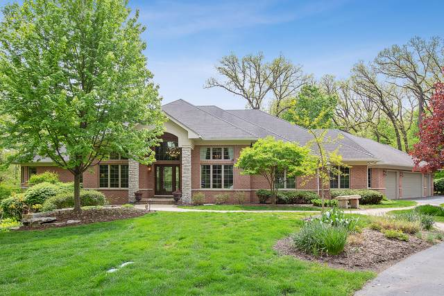 14555 W Wallingford Trail, Manhattan, IL 60442 (MLS #10493950) :: The Wexler Group at Keller Williams Preferred Realty