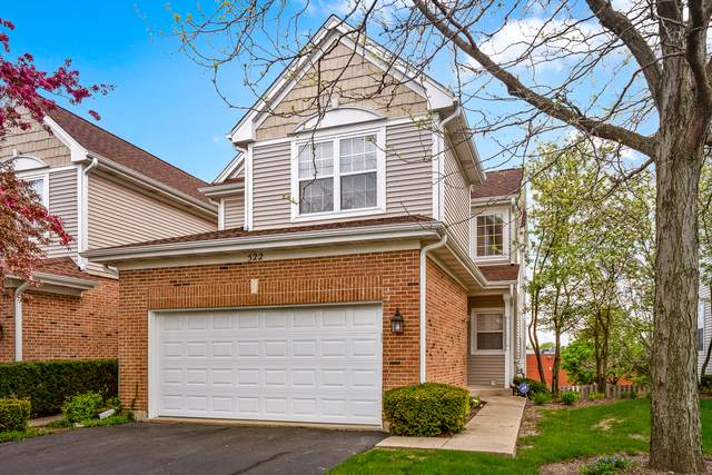 522 Cherry Hill Court, Schaumburg, IL 60193 (MLS #10494030) :: Berkshire Hathaway HomeServices Snyder Real Estate