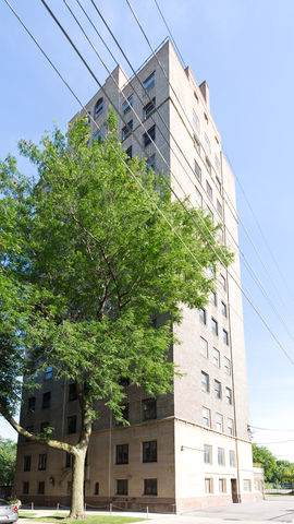 1321 E 56th Street #6, Chicago, IL 60637 (MLS #10494037) :: Angela Walker Homes Real Estate Group