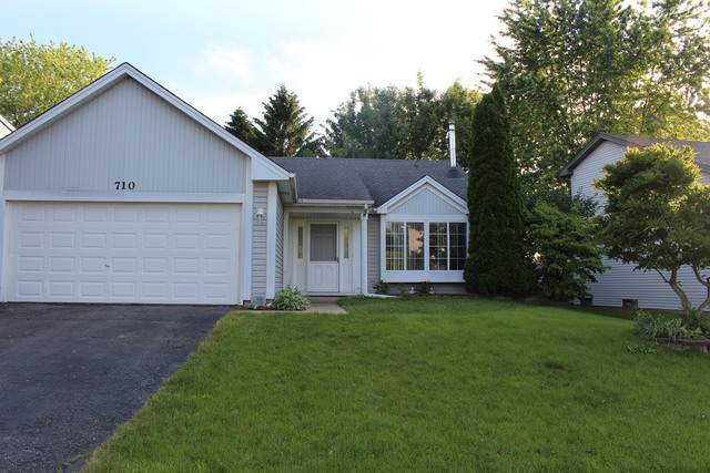 710 Thorndale Drive, Elgin, IL 60120 (MLS #10494061) :: Suburban Life Realty