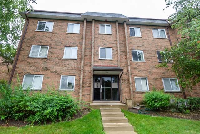 909 Buccaneer Drive 24-02, Schaumburg, IL 60173 (MLS #10494122) :: John Lyons Real Estate