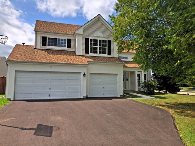 163 Blueberry Lane, Round Lake Beach, IL 60073 (MLS #10494159) :: Baz Realty Network | Keller Williams Elite