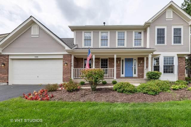 356 Banbury Lane, Grayslake, IL 60030 (MLS #10494175) :: Property Consultants Realty