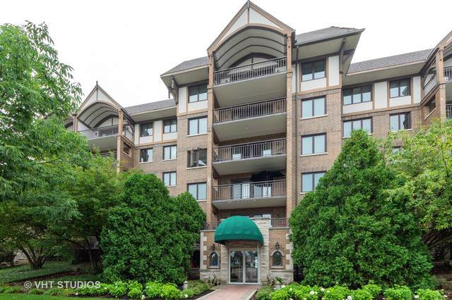 15 S Pine Street 205A, Mount Prospect, IL 60056 (MLS #10494232) :: Property Consultants Realty