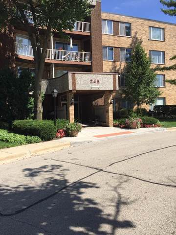 245 S Park Lane #314, Palatine, IL 60074 (MLS #10494243) :: Berkshire Hathaway HomeServices Snyder Real Estate