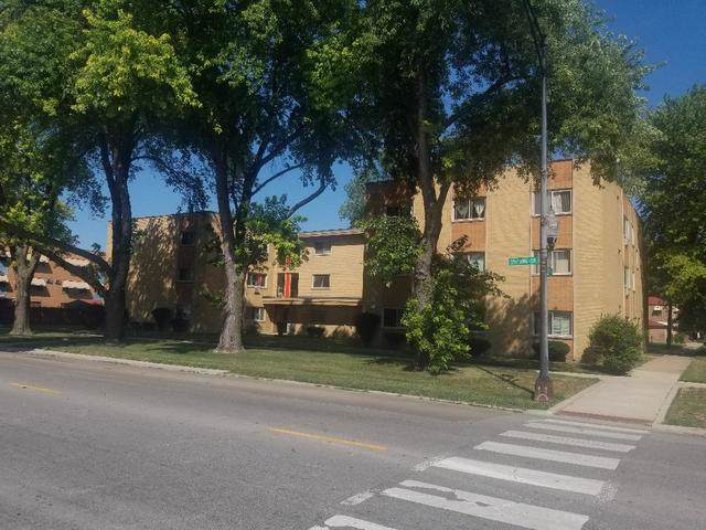 8343 S King Drive 2D, Chicago, IL 60619 (MLS #10494332) :: Angela Walker Homes Real Estate Group