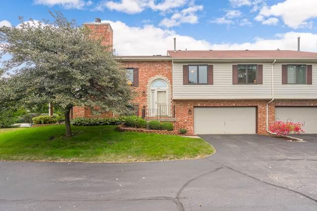 11231 Bradley Court, Orland Park, IL 60467 (MLS #10494336) :: Angela Walker Homes Real Estate Group