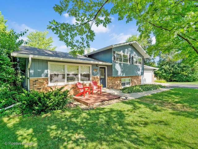 6025 Middaugh Avenue, Downers Grove, IL 60516 (MLS #10494363) :: The Wexler Group at Keller Williams Preferred Realty