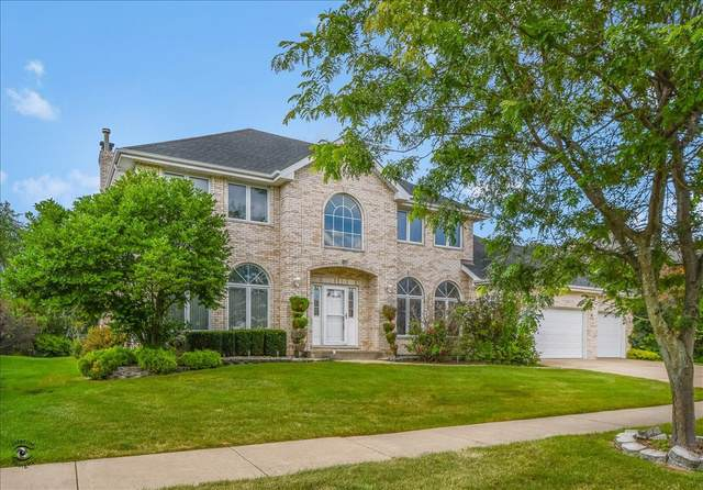 17328 Antler Drive, Orland Park, IL 60467 (MLS #10494477) :: The Wexler Group at Keller Williams Preferred Realty