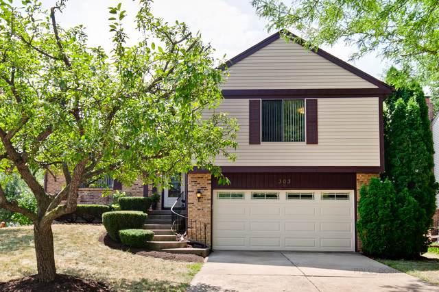 303 Abbey Lane, Vernon Hills, IL 60061 (MLS #10494521) :: Berkshire Hathaway HomeServices Snyder Real Estate