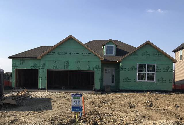 15934 S Selfridge Circle, Plainfield, IL 60586 (MLS #10494674) :: Property Consultants Realty