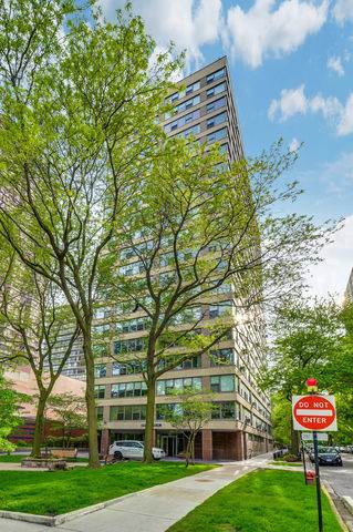 2970 N Lake Shore Drive 6D, Chicago, IL 60657 (MLS #10494828) :: The Mattz Mega Group