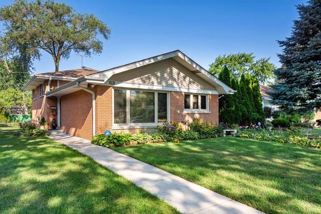 9424 Kilbourn Avenue, Skokie, IL 60076 (MLS #10494890) :: Angela Walker Homes Real Estate Group