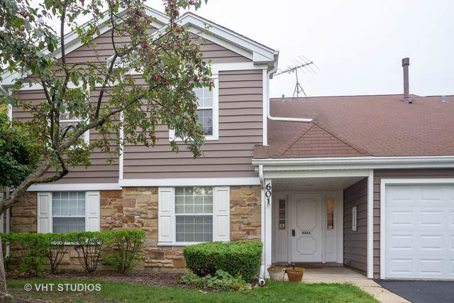 601 Hanover Court Z2, Schaumburg, IL 60194 (MLS #10494969) :: John Lyons Real Estate
