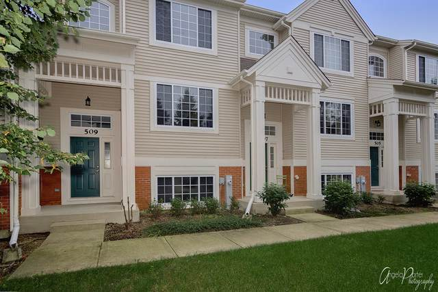 509 Cary Woods Circle #509, Cary, IL 60013 (MLS #10495011) :: Berkshire Hathaway HomeServices Snyder Real Estate