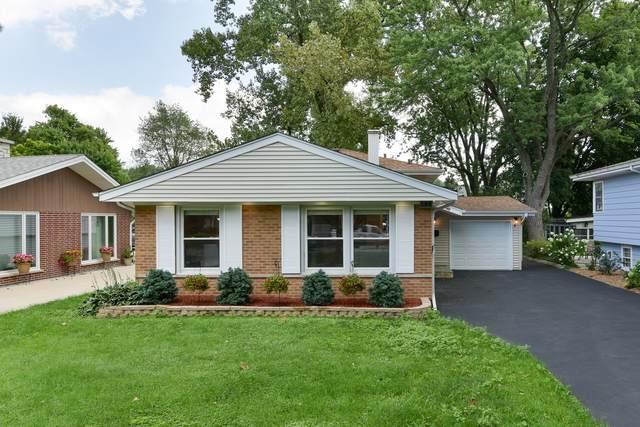 145 S Park Boulevard, Glen Ellyn, IL 60137 (MLS #10495168) :: The Wexler Group at Keller Williams Preferred Realty