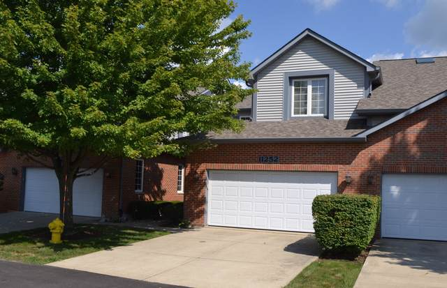 11252 Endicott Court, Orland Park, IL 60467 (MLS #10495263) :: Berkshire Hathaway HomeServices Snyder Real Estate