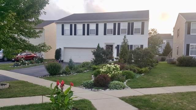 1210 Sarasota Drive, Pingree Grove, IL 60140 (MLS #10495315) :: John Lyons Real Estate