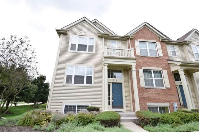 919 Emerald Drive, Pingree Grove, IL 60140 (MLS #10495372) :: John Lyons Real Estate