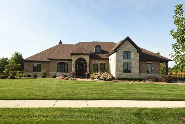 11257 Chimay Court, Frankfort, IL 60423 (MLS #10495383) :: Berkshire Hathaway HomeServices Snyder Real Estate