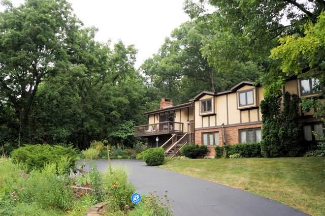 3N216 Echo Valley Lane, Elburn, IL 60119 (MLS #10495482) :: HomesForSale123.com