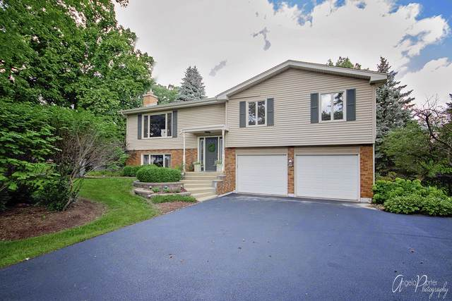3508 E Crystal Lake Avenue, Crystal Lake, IL 60014 (MLS #10495518) :: Berkshire Hathaway HomeServices Snyder Real Estate