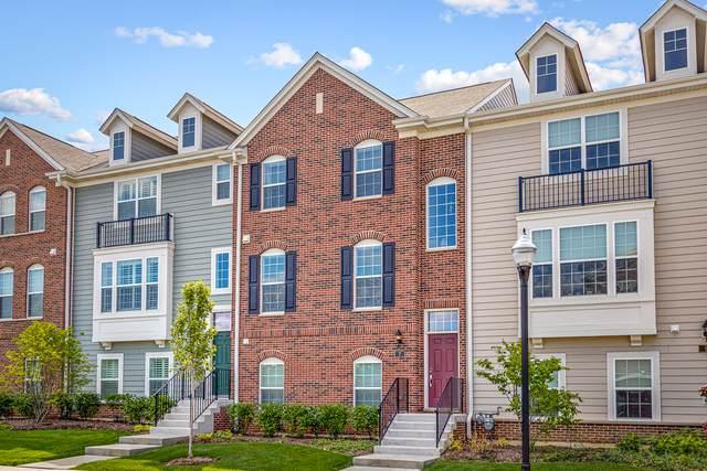 7 Neri Drive, Schaumburg, IL 60194 (MLS #10495656) :: John Lyons Real Estate