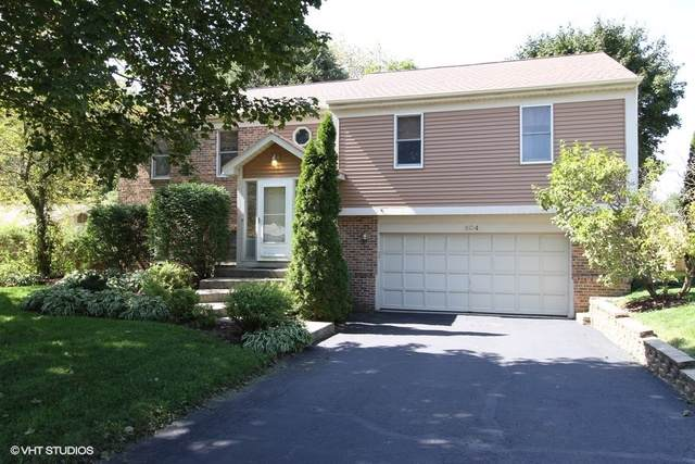 904 S Summit Street, Barrington, IL 60010 (MLS #10495750) :: Ani Real Estate