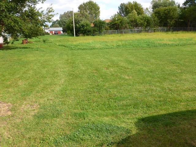 Lot 1 Lawler Avenue, Lombard, IL 60148 (MLS #10495778) :: Angela Walker Homes Real Estate Group