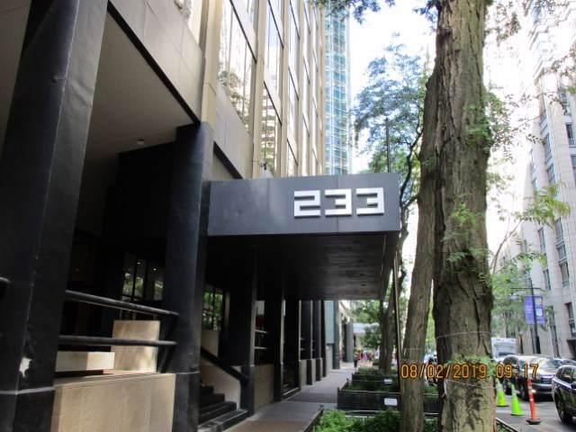 233 E Erie Street #1205, Chicago, IL 60611 (MLS #10495804) :: The Mattz Mega Group