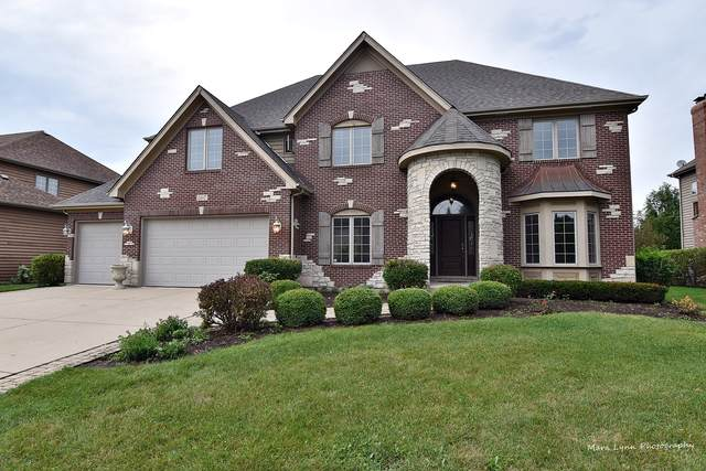 507 Eagle Brook Lane, Naperville, IL 60565 (MLS #10495940) :: Berkshire Hathaway HomeServices Snyder Real Estate